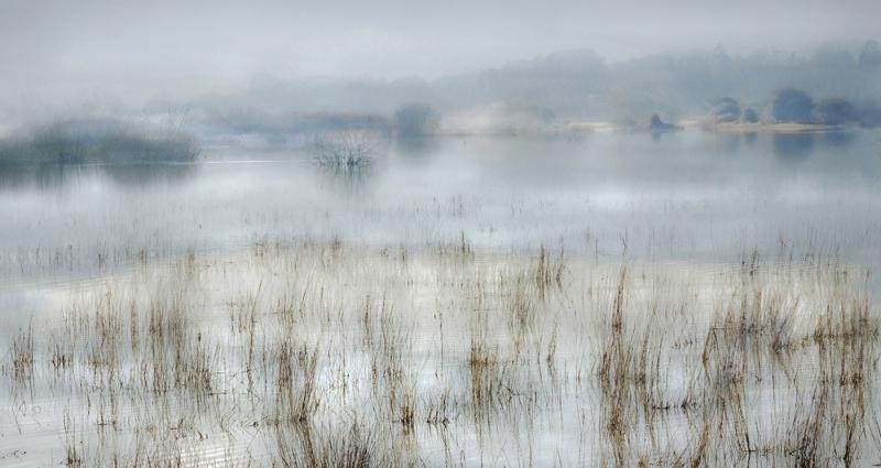 Michael_Davison-Early_Morning-10