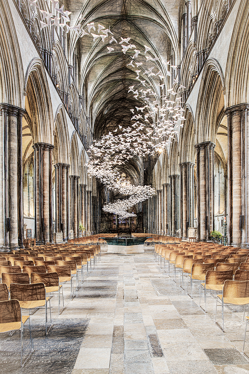 Ray-Acland-Doves-At-Salisbury-Cathedral-10