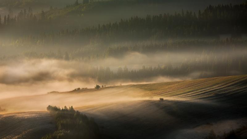 Sheila_Tester-Rising_Mist_Poland-9