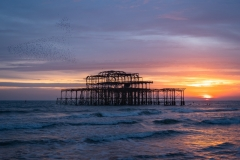 Graham_Ainge-A_Murmuration_Sunset-9.5
