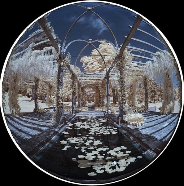 Brian_Southward-Pergola_and_Lily_Pond-10