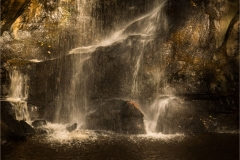Sarah_Nichol-Golden_Waterfall-10