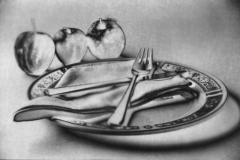 Linda Bullimore-Three Apples and a Plate from Paper Negative-10