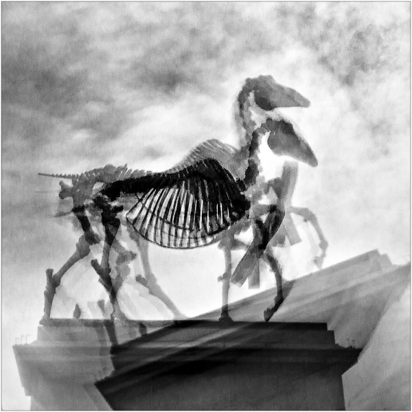 Stephen Marsh-The Fourth Plinth X 2-10