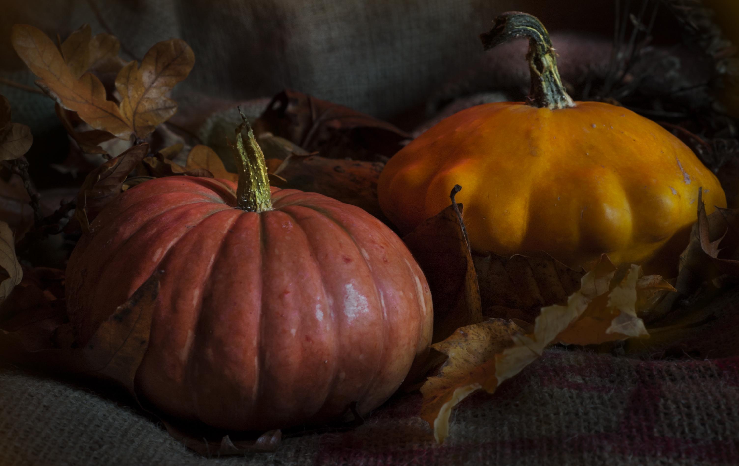 Ronnie Hall-A Pair of Pumpkins-9