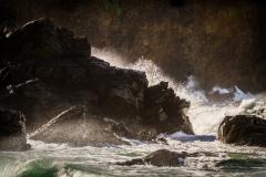 Sue_Nash-Wild_Sea-9
