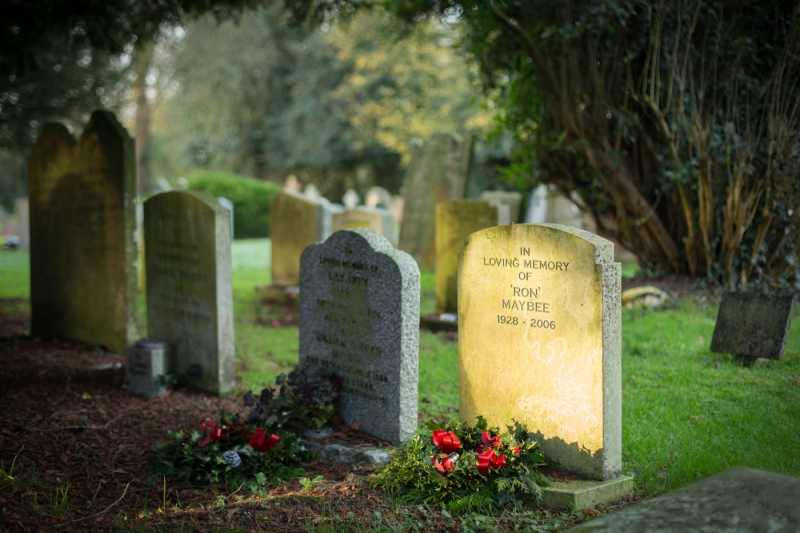 Edgar Feldmanis-Rest in Peace-10