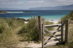 Sarah_Nichol-The_Gate_to_the_Beach-9