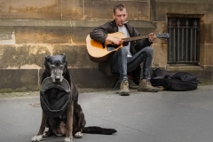 Taken at Edinburgh , Edinburgh, , UK, Sunday, 28/05/2017. Photo by: Richard Ryder