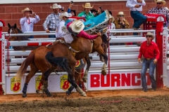 Michael_Harris-Bucking_Bronco-9