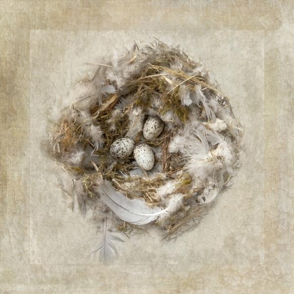 Lorna_Brown-Nest-10