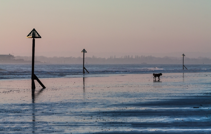 Richard_Webb-A_Walk_Along_the_Beach-9.5