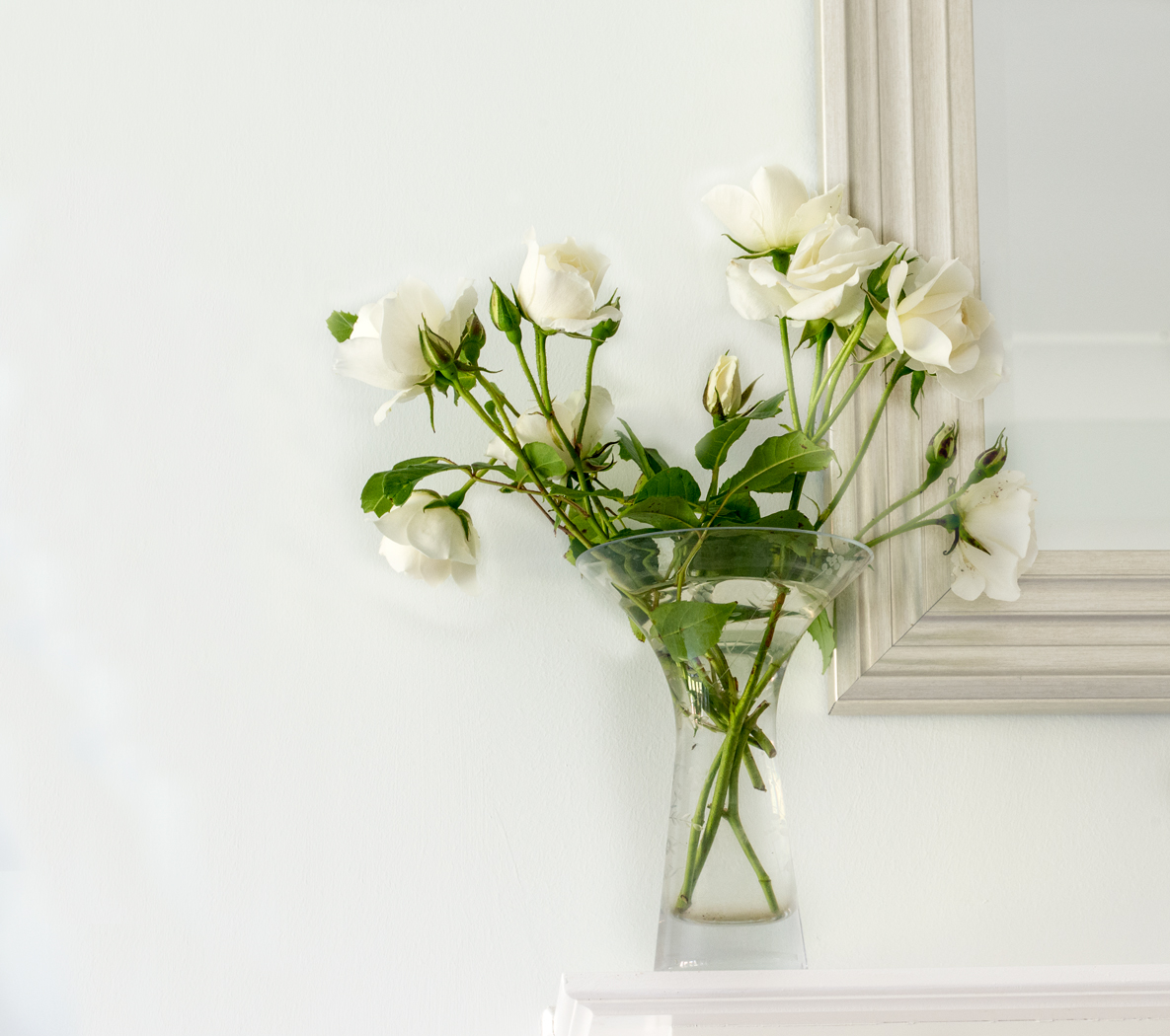 Jeff Owen-White Roses-9