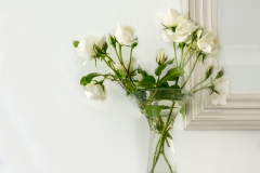 Jeff Owen-White Roses-9