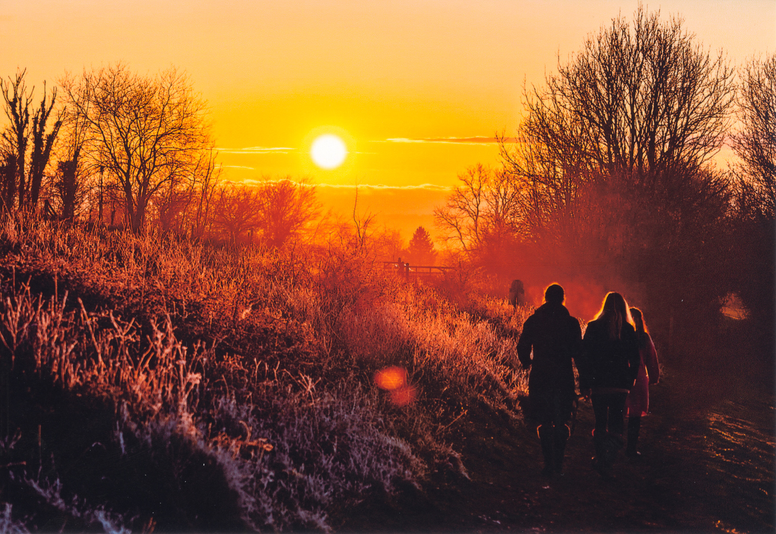 9.-Sunset-on-Harting-Down